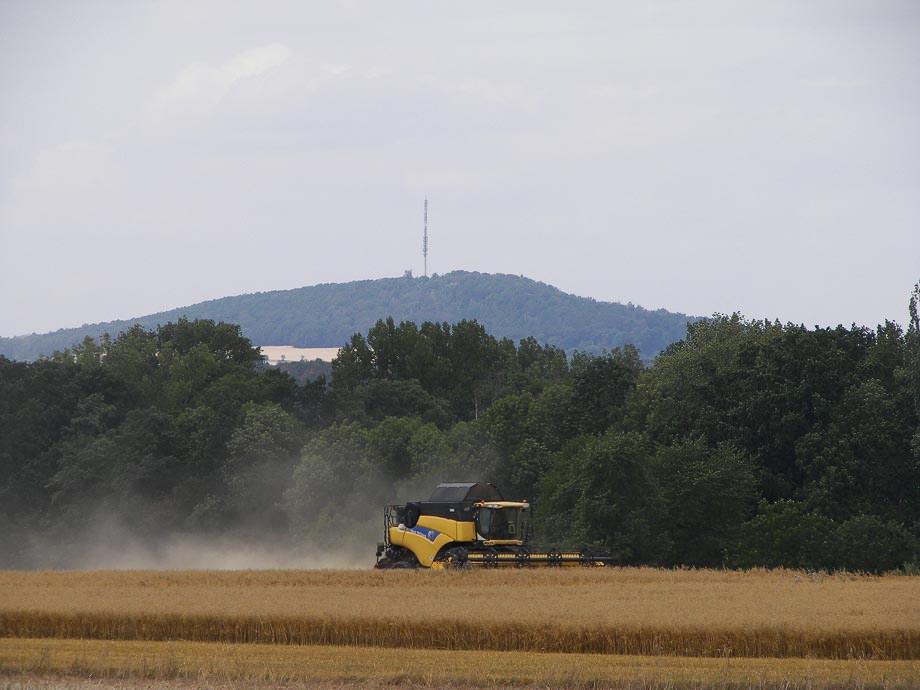 Lohnunternehmen Heyde bei der Haferernte – im Hintergrund der Collmberg b. Oschatz